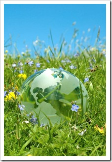 Globe in the grass