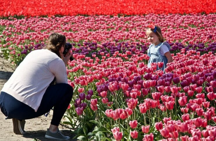 Mom taking a photo of her daughter in a field of flowers