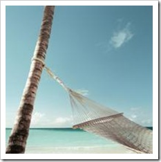Hammock on a palm tree on a white beach