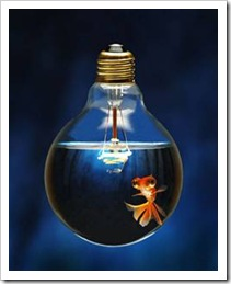 Fish swimming in a lightbulb