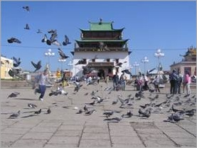 Chinese temple with pigeons