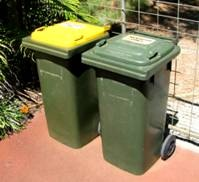 Handy Family Tips: Smelly bins