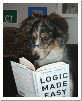 Dog reading logic book