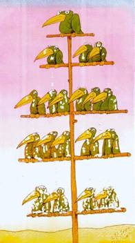 Business hierarchy shown as birds on tree