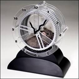 Rat in a clock wheel