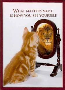 Cat seeing lion in the mirror
