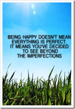 Being happy doesn't mean everything is perfect. It means you've decided to see beyond the imperfections