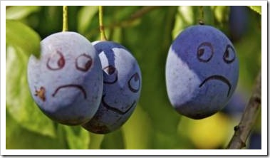 Smiley faces made of grapes