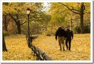 Couple walking along a leaf strewn park in Autumn