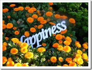 Happiness sign on a flower bed