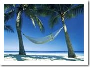 Hammock between two palm trees - a great way to feel good