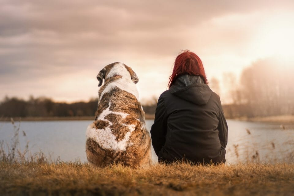 Woman sitting by a lake with large dog