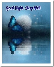 Butterfly over calm water: Good night. Sleep well