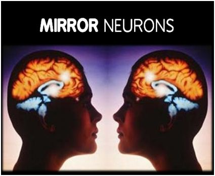 Mirror Neurons and Parenting