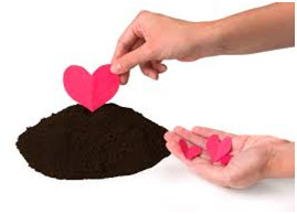 Planting love hearts in soil