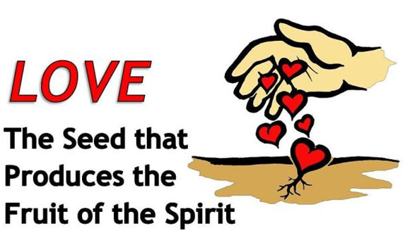 Love. the seed that produces the fruit of the spirit.
