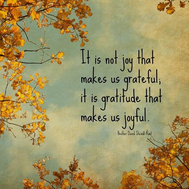 It is not joy that makes us grateful. It is gratitude that makes us joyful - Brother David Steindl-Rast