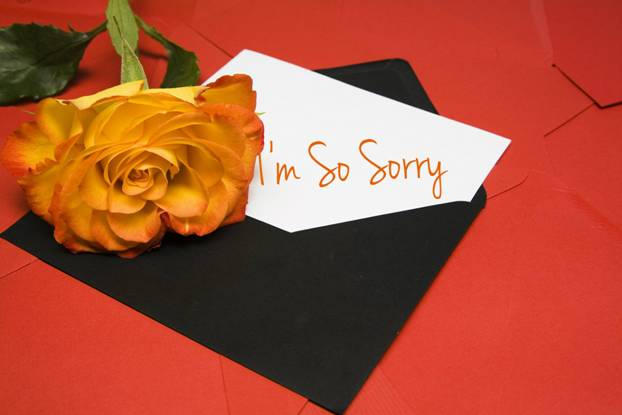 A rose and a card saying I'm so sorry