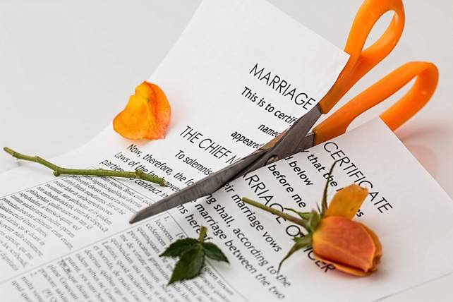 Scissors cutting a marriage certificate and a rose as a symbol of divorce