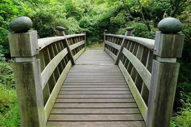 A bridge over a creek