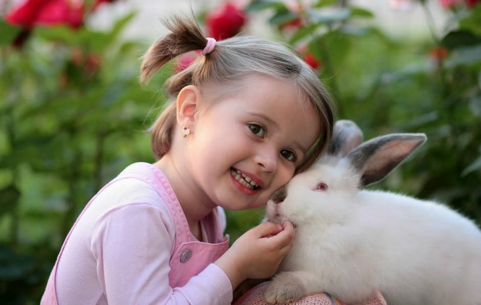 Little girl with white rabbit