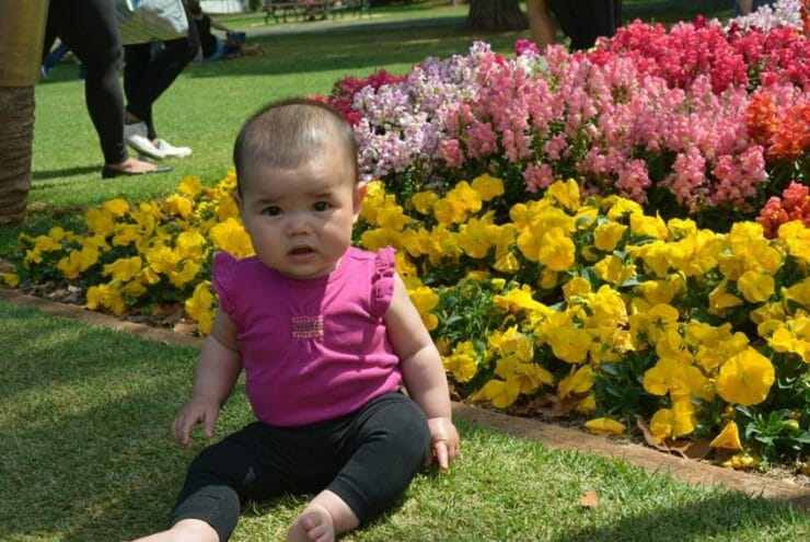 Baby girl sitting in front of a bed of flowers