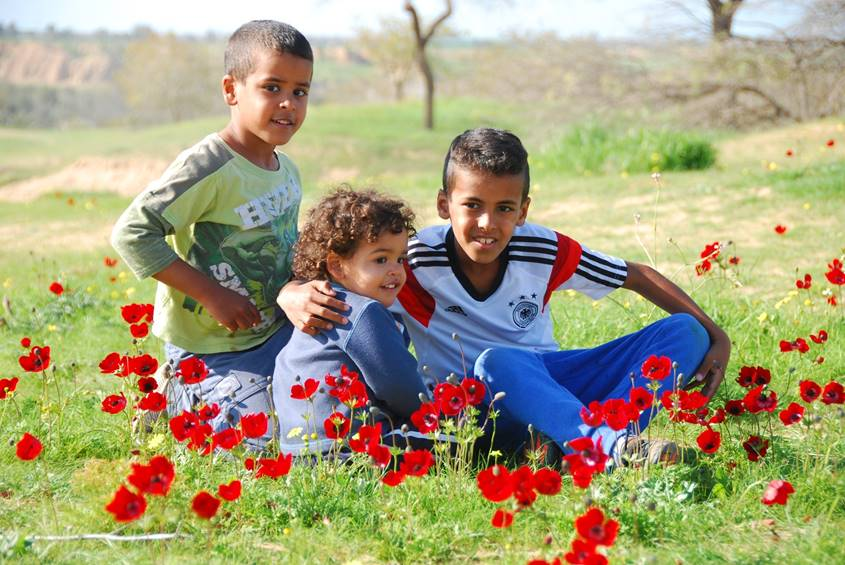 3 young brothers in a field of flowers