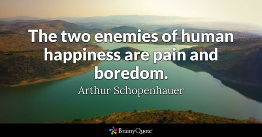 The two enemies of human happiness are pain and boredom - Arthur Schopenhauer