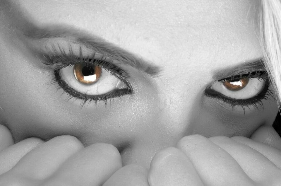 Woman's terrified face - fight, flight or freeze?